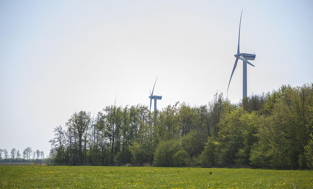 Uitnodiging: 26 februari In gesprek met de ecologen van Windplanblauw