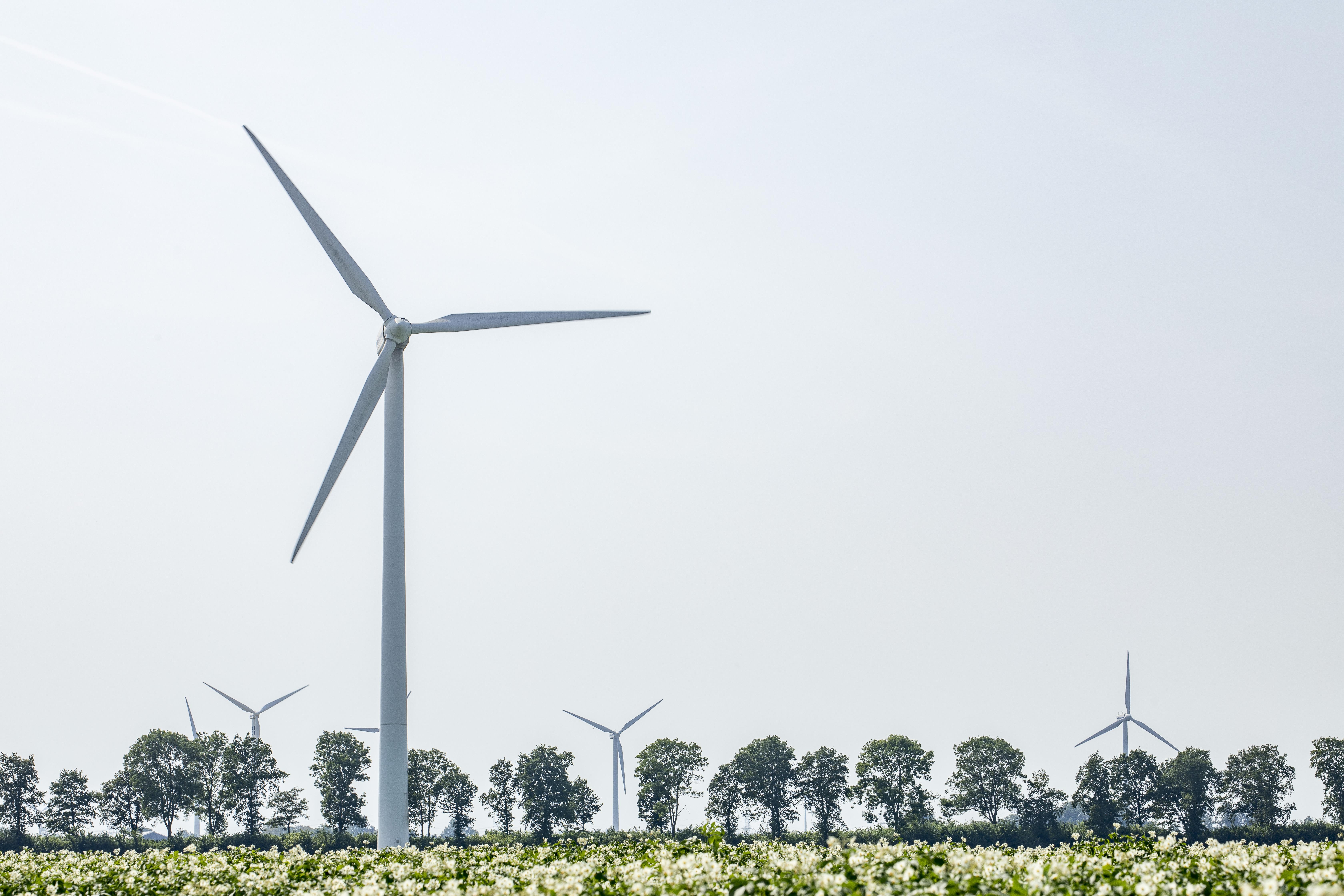 Vattenfall en SwifterwinT aan de slag met Windplanblauw
