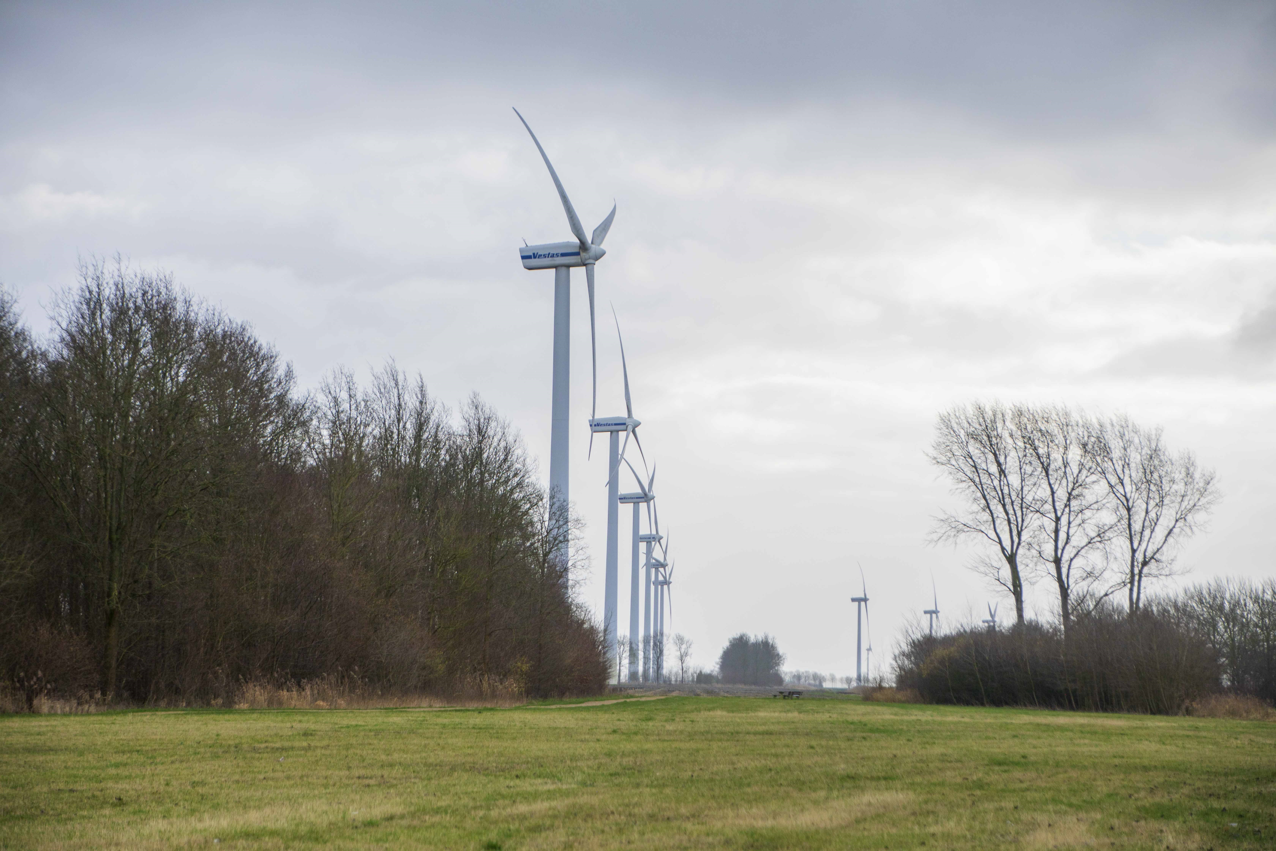 Dura Vermeer en ABB Power Grids geselecteerd als preferred bidders Windplanblauw
